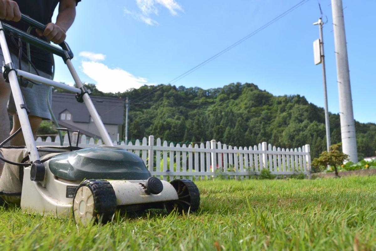 芝生を手入れする人必見!管理に必要な道具の種類と選び方