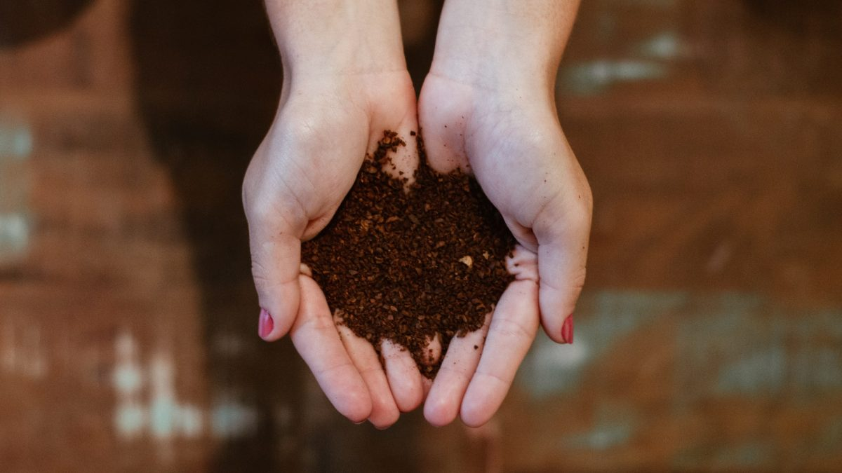 芝生を手入れする人必見!肥料の種類と効果をまとめてみた