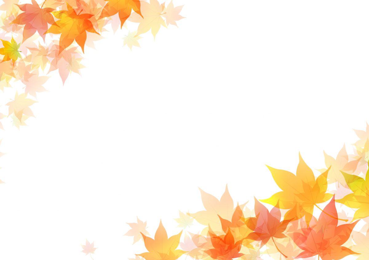 芝生を手入れする人必見!暖地型芝生の秋季(9月~11月)の作業ポイントと注意点