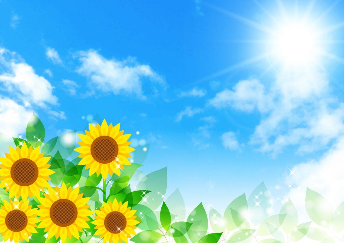 芝生を手入れする人必見!暖地型芝生の夏季(6月~8月)の作業ポイントと注意点
