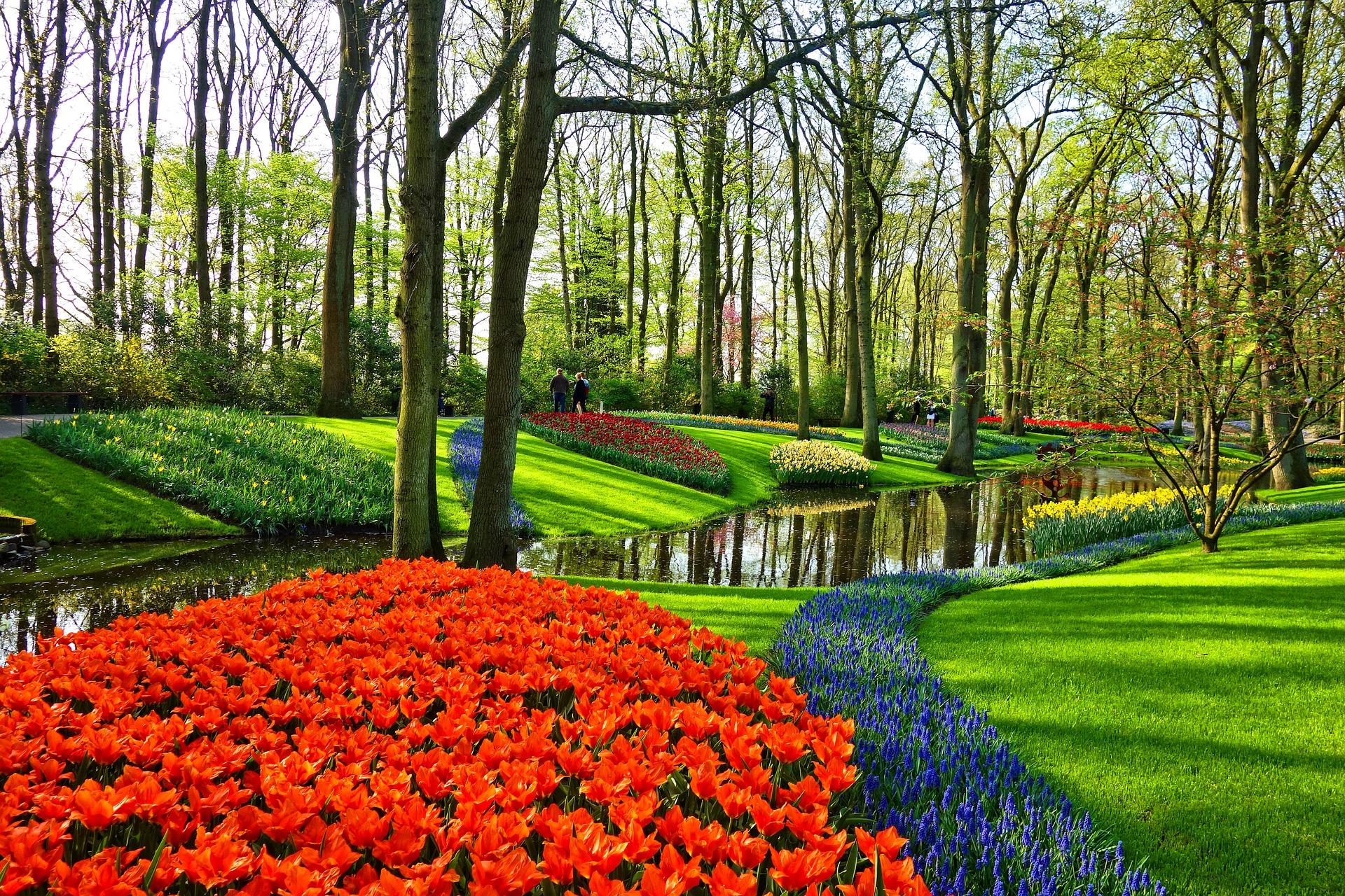 芝生の根切りに適した時期は春と秋