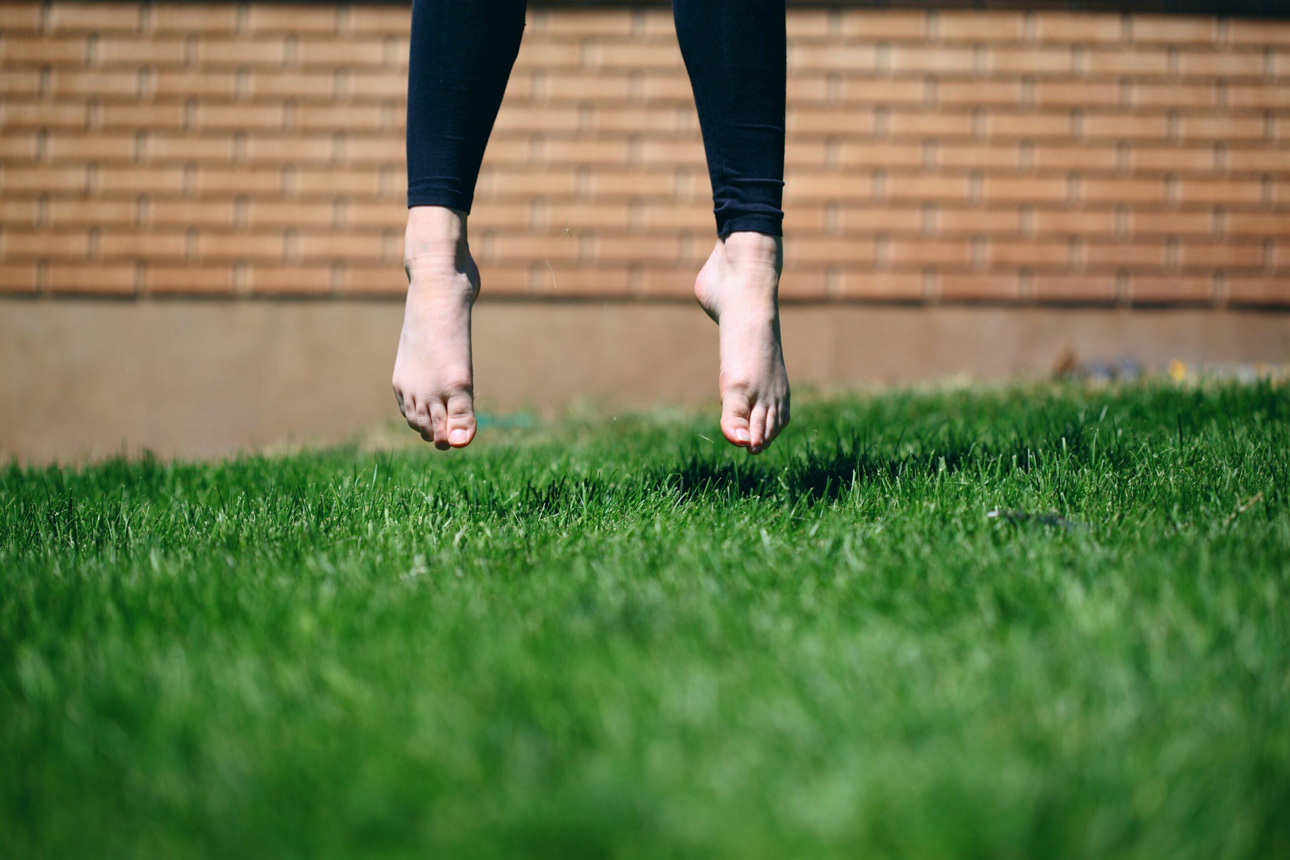 芝生を春以外に植える際に押さえておくポイント
