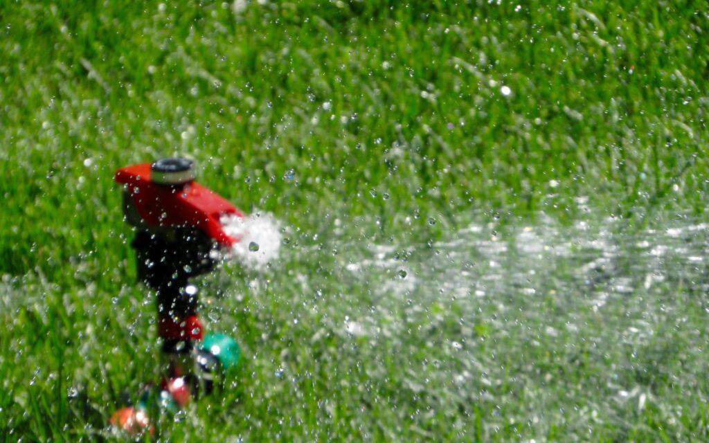 芝生の水やり・散水のコツを解説!元気に育てるために重要なポイント
