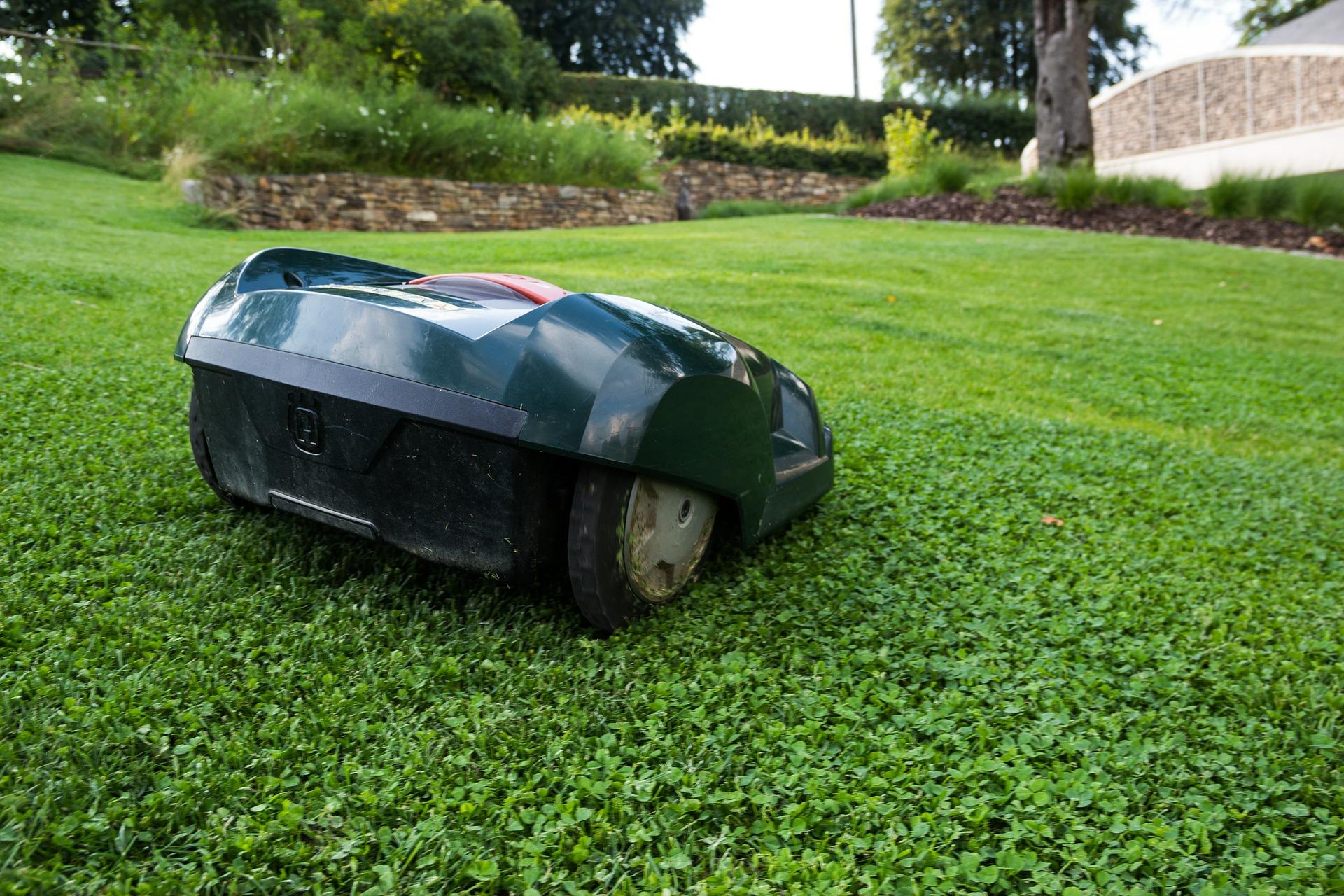 芝生の密度を上げるために芝刈りは必須