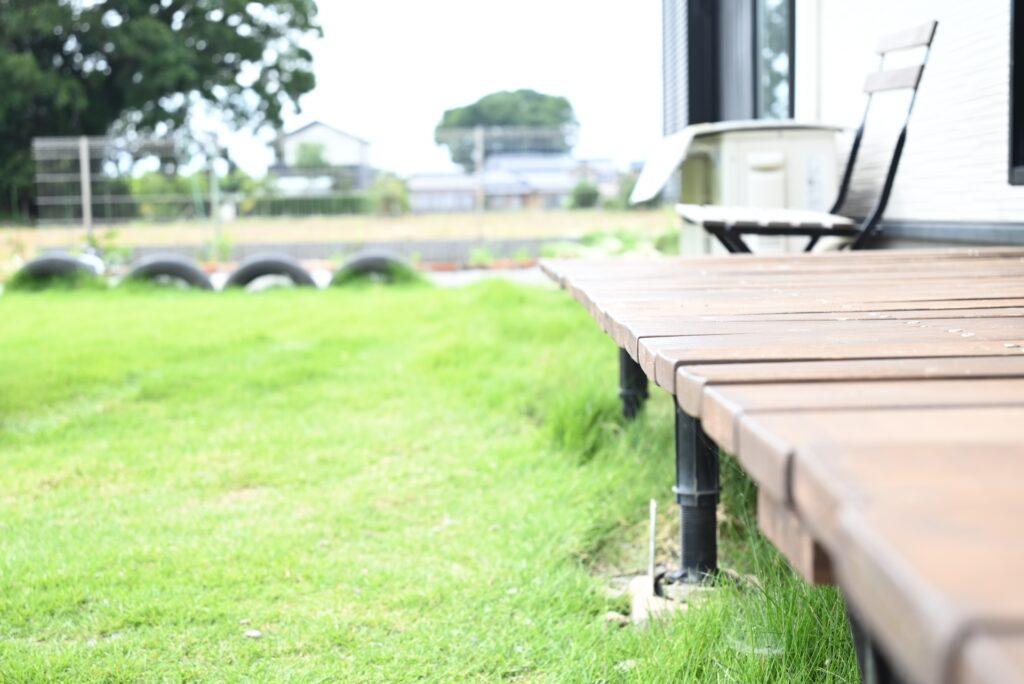 天然芝生TM9の特徴と手入れの仕方|育てている人気芝SNSアカウントを紹介!