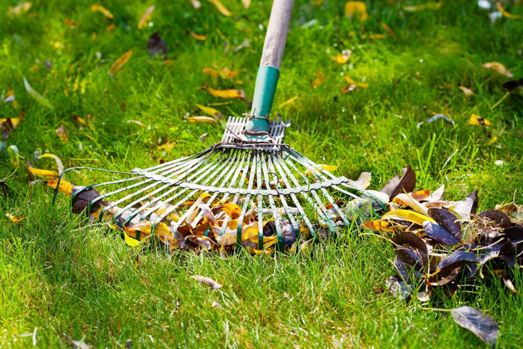 芝生に使えるおすすめのレーキ7選|用途に合わせて選ぶポイント